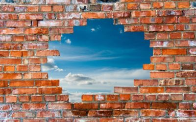 Construye tu muro. Defiende lo tuyo.